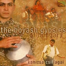 boyash gypsies of hungary
