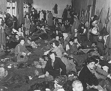 gypsy holocaust