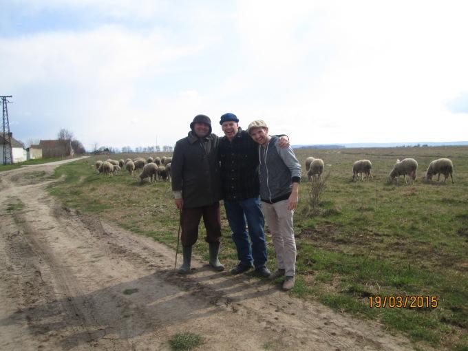 Shepherd in Serbia